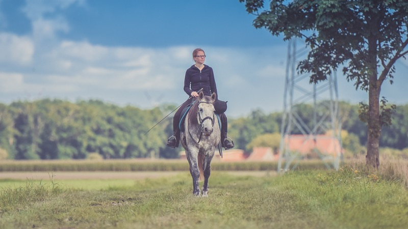 & 5 Gift Ideas For Horse Lovers: Equestrian Friendly [March 2019]